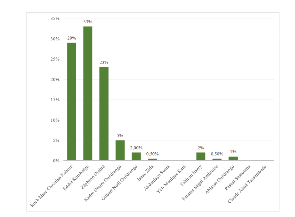 Résultats du sondage Afrique Opinion et IEI Europa