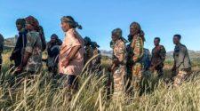 l'armée érythréenne impliquée dans les combats contre le TPLF