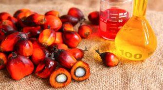 Hausse des prix au Sénégal: l'huile de palme augmenté