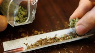 Tunisie: la loi sur le cannabis suscite une indignation générale