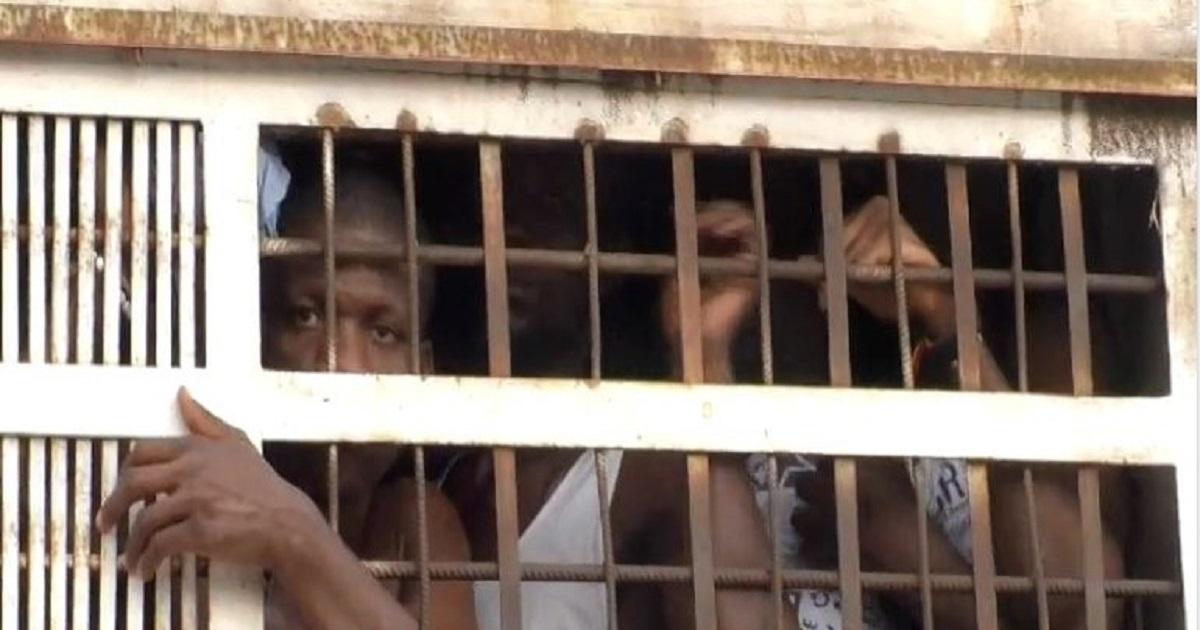Guinée: quatre figures de l'opposition guineenne libérées
